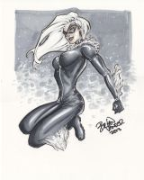 Blackcat by BrianVander