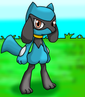 Riolu by DreamyNormy