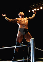 Randy Orton by Crystal-Cat