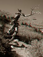 Get Offa My Lawn - Anaglyph by Temphis