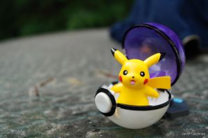 J used Master Ball. Aargh! Almost had it! Pikachu by Morrissex