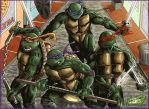 Turtle Power by Lannytorres