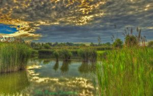 Hungarian landscapes.HDR-picture(photo series)15. by magyarilaszlo