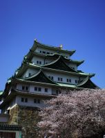 Nagoya castle by sleepyhamsteri