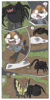 to catch a bug- page 6 by Karry-Bird