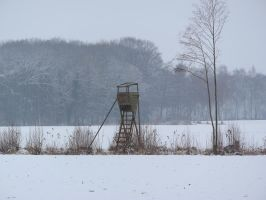 snow 19 by tegalus