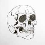 Human Skull Sketch by MoonIllustrator