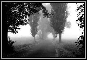 White Fog I. by Mishaela