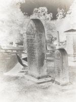 Cemetary Texture 17 by dknucklesstock