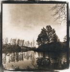 Pond II. Cyanotype by urbantrip