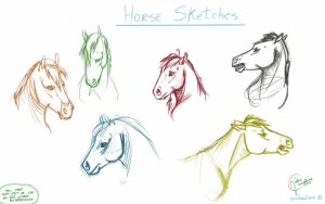 Horse sketches-head by IceIsland