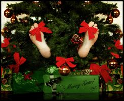 Merry Xmas by chabruphotography