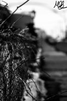Fence by Mobster9
