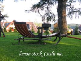 romantic carriage by lemon-stock