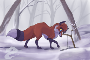 O-ruff  is studing the snare by KateOkami