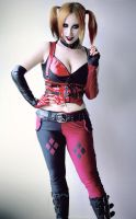 Harley is back by Stephanie-van-Rijn