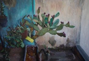 Opuntia ficus indica by scifo
