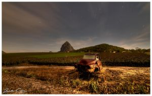 Beerwah Pineapple Fields by jaydoncabe