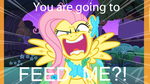 Are you Going to FEED ME by zigaudrey