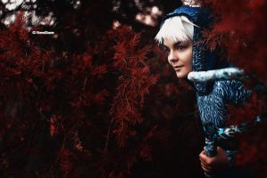 Jack Frost by ash-colored-sky
