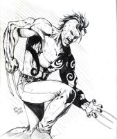 Daken for coloring by jey2dworld