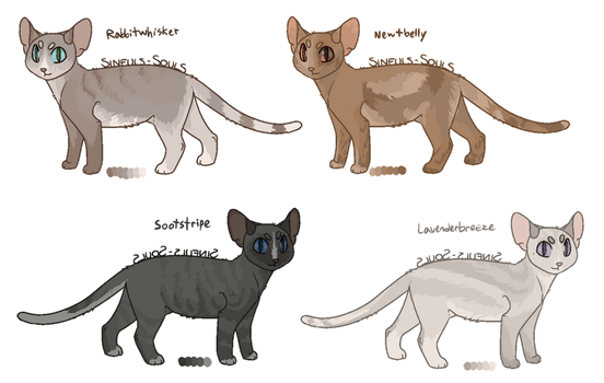warrior cat point adopts - open by coIored