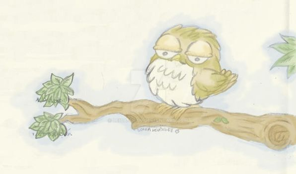 Little Owl by Leica-chan