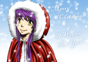 Merry christmas and a happy new year by ShihonRainbow