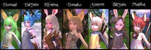 My Tera Alts by Maeka-Amanite