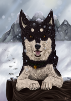 Snow doggie by Muketti