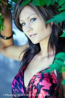 Bianca in the Bushes by FireflyPhotosAust