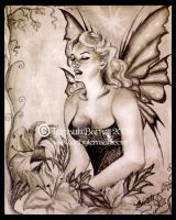Pin-up Fairy by Terrauh
