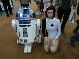 Ace and R2-D2 by PrincessWombat