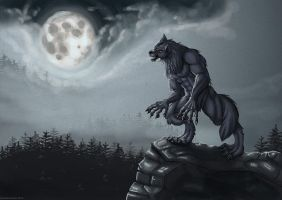 Werewolf on a cliff by hamstertoybox