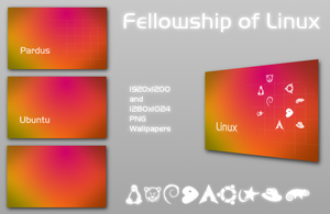 Fellowship of Linux by h2okerim