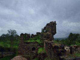 INDIA 2008 3 by Sallow