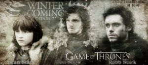 Game of throne banner by ChungLinHo