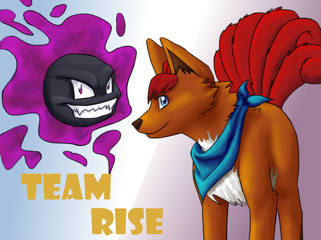 Team RISE redux by SiKKiN