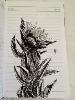 Flower with thik leaves by VLStone