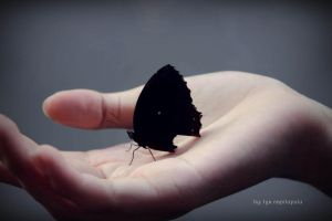 The Dark Butterfly on the Hand by sweetya96