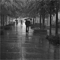 Autumn Rain by Val-Faustino