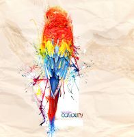 Parrot of Many Colours by idesign-it