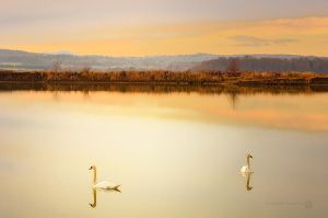 A snowless January by XanaduPhotography