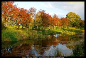 Ireland In Autumn III by fluffyvolkswagen
