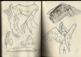 Moleskine Wings Study I by Versya