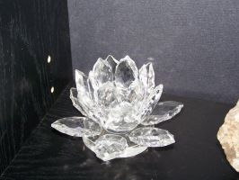 Crystal Lotus Flower 2 by seiyastock