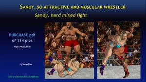 Sandy, hard mixed fight by eurysthee