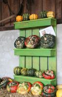 awesome pumpkins 9 by ingeline-art
