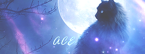 Ace BSL - Sign by SuppyArts
