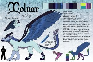 Molnar Reference Sheet by NaokoHara